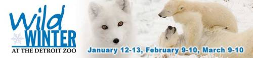 Detroit Zoo - Wild Winter Weekends