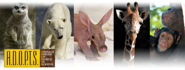 Adopts Head Banner - Detroit Zoo