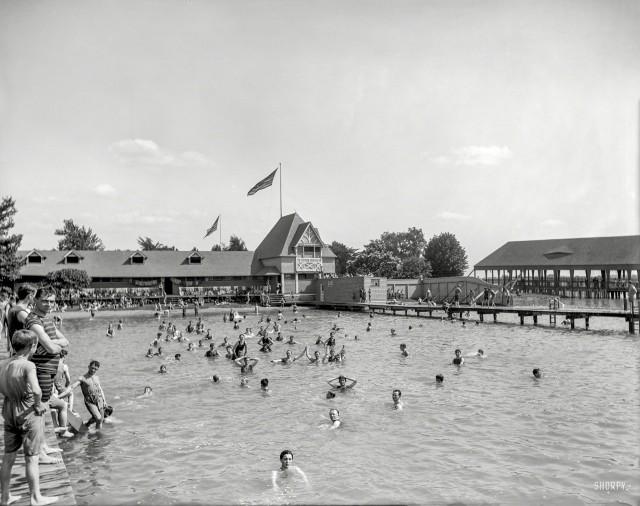 Stag Swim - 1903